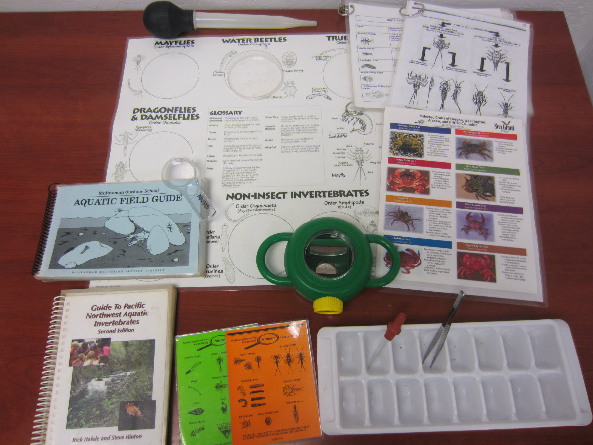 Contents of Macroinvertebrates Kit