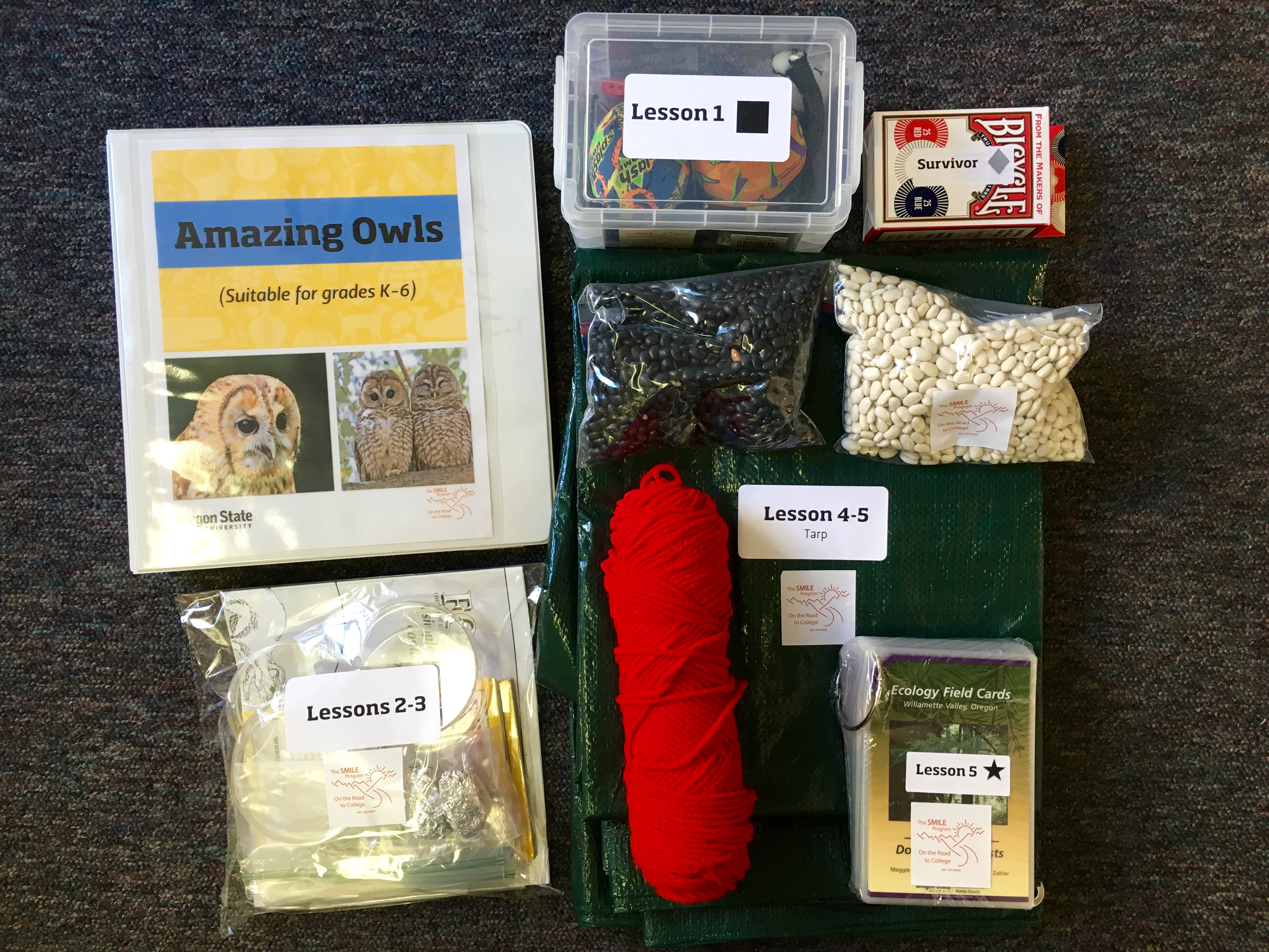 Contents of Amazing Owls Kit