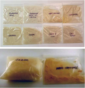 The top image shows the beginning of fermentation after 5 minutes. The bottom image, taken after 20 minutes, shows the bag with the sugar feedstock full of CO2 gas, while the wood shavings bag is flat.