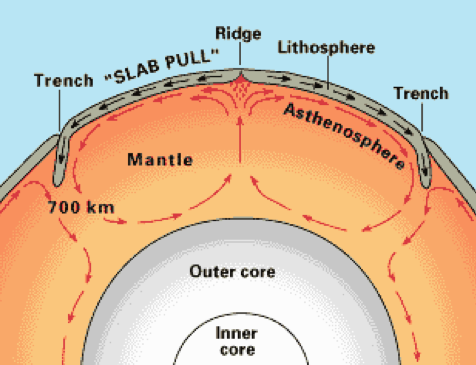Diagram of Earth's plate tectonics.