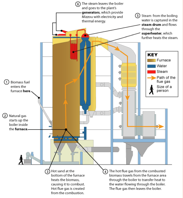A diagram of a Biomass boiler.