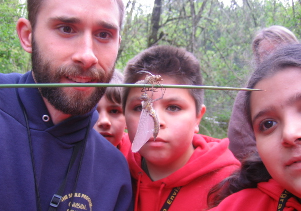 Students and teacher watch crane flies
